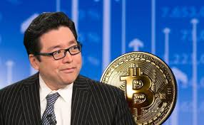 Fundstrat's Tom Lee Makes His Case For HODL-ing On To Bitcoin